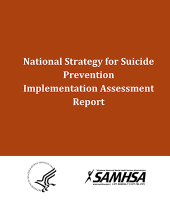 National Strategy for Suicide Prevention Implementation Assessment Report